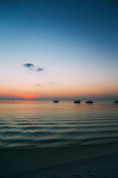 Maafushivaru, Birthing Dolphins And Swimming With Manta Rays... In The Maldives (24)