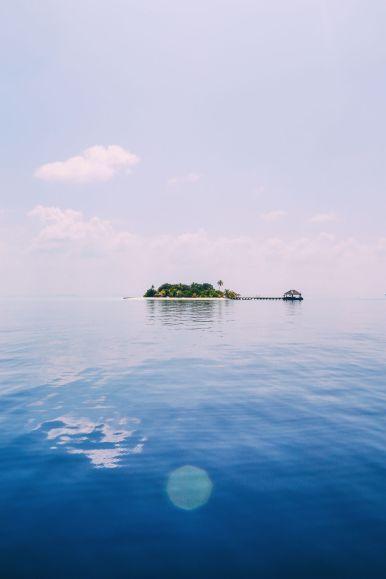 Maafushivaru, Birthing Dolphins And Swimming With Manta Rays... In The Maldives (78)