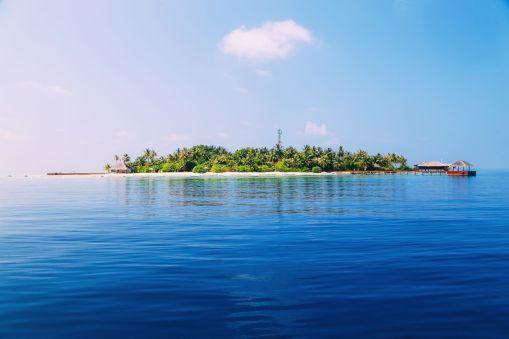 Maafushivaru, Birthing Dolphins And Swimming With Manta Rays... In The Maldives (79)