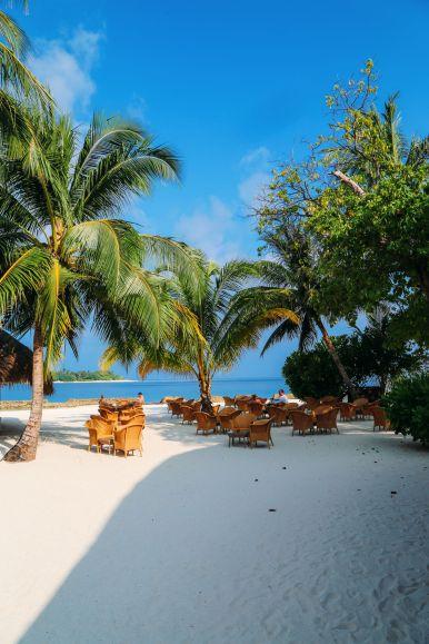 The Long Island Of Kuramathi... In The Maldives (39)