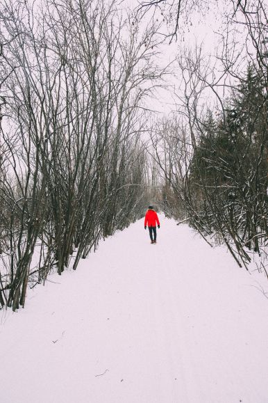 Fat Biking Across The Frozen River Valley To The Ice Castles Of Edmonton, Canada (24)