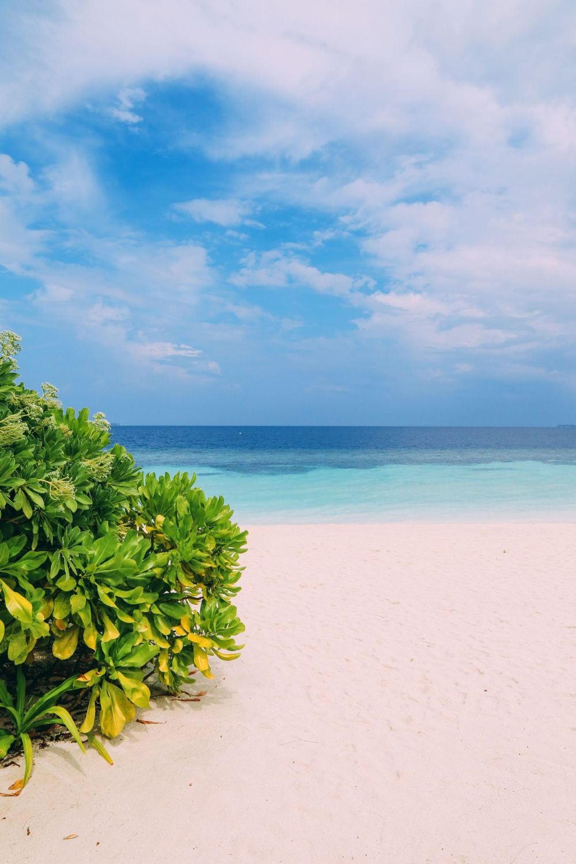 The Amazing Beauty That Is Kandolhu Island, Maldives (8)