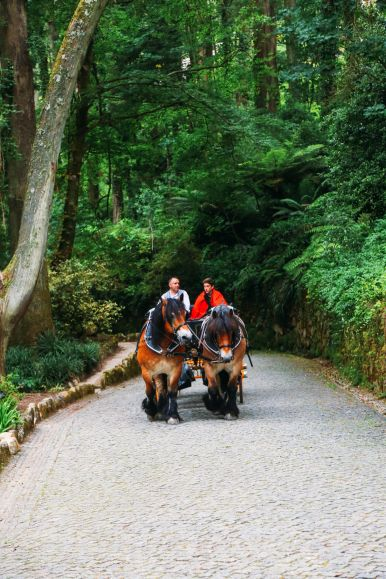 The Moorish Castle, Palace of Sintra And Pena Park – 3 Beautiful Places To See In Sintra, Portugal (35)