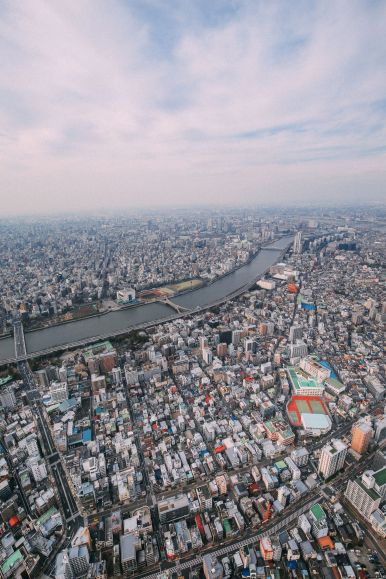 Photographs And Postcards... From Tokyo, Japan (10)
