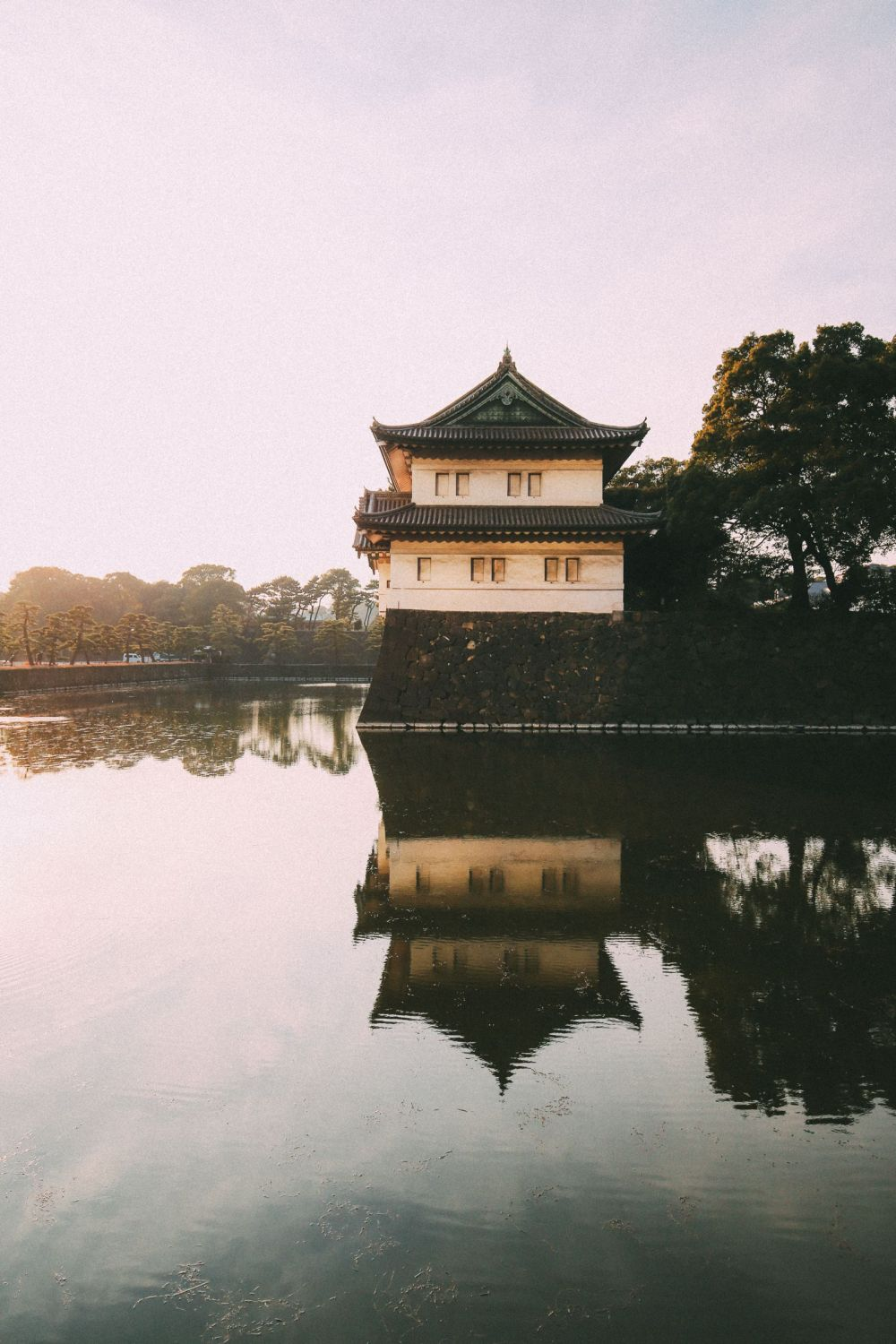 Photographs And Postcards... From Tokyo, Japan (8)