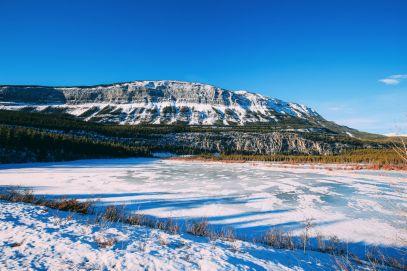 Dog Sledding In Jasper And Ice Hockey In Edmonton - 2 Canadian 'Must-Do's! (11)