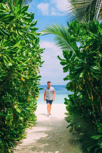 Swimming With Wild Turtles And Those Amazing Island Colours... At Kandolhu Island, Maldives (63)