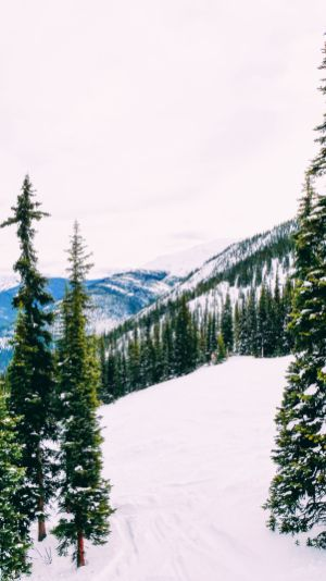 Where To Go Skiing In Jasper, Canada? Marmot Basin! (21)