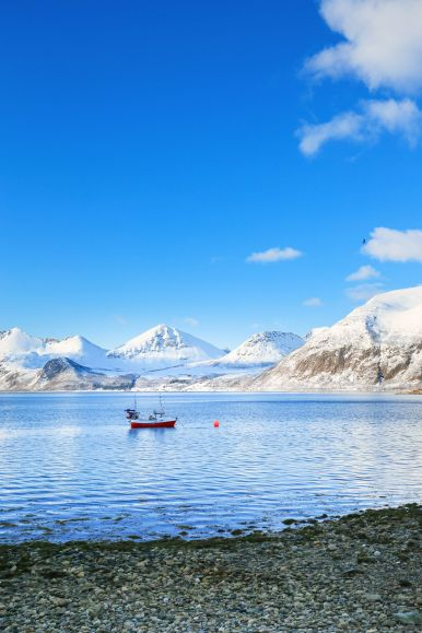 Visiting The Artic Circle in Tromso and Sommaroy in Norway, Europe. Northern Lights, Snow Mountains, Seaside (25) (16)