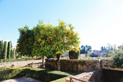 The Absolutely Beautiful Generalife Palace… In Granada, Spain (10)