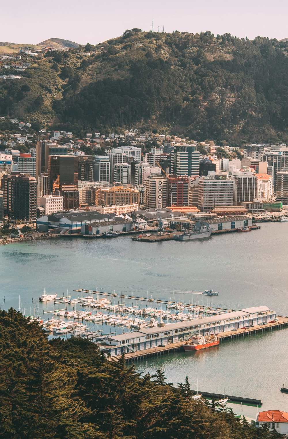 15 Things To Do In Wellington, New Zealand (13)