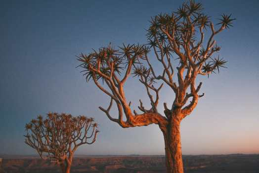 11 Beautiful Places You Have To See In Namibia (7)