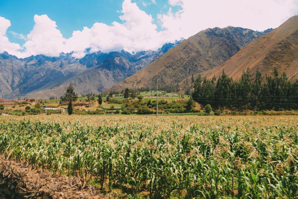 The Journey Up To Machu Picchu Village - Aguas Calientes, Peru (24)