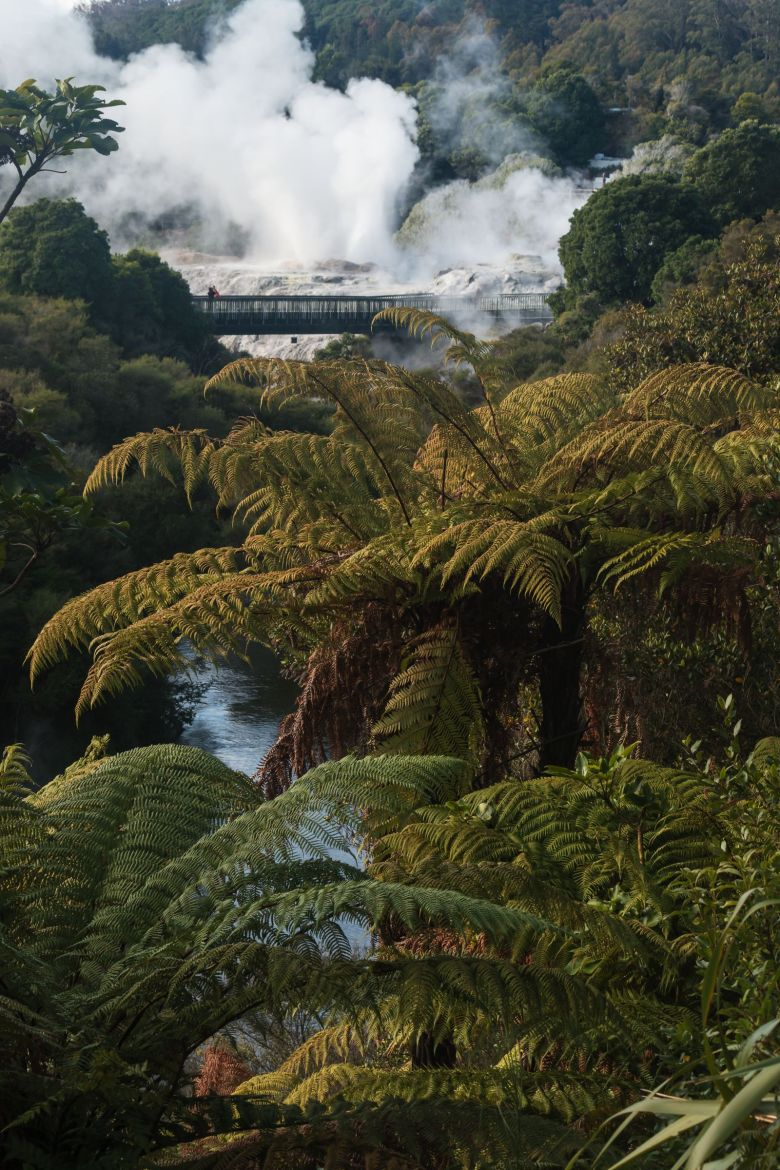 12 Places You Need to Visit on a Trip Across New Zealand (11)