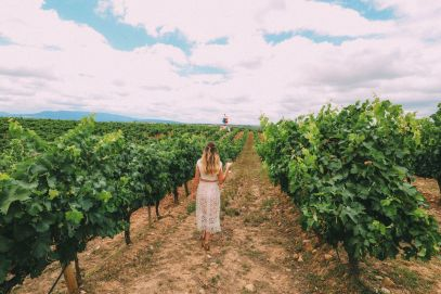 Afternoons In Spanish Vineyards In La Rioja... And Evening In Bilbao In The Spanish Basque Country (32)
