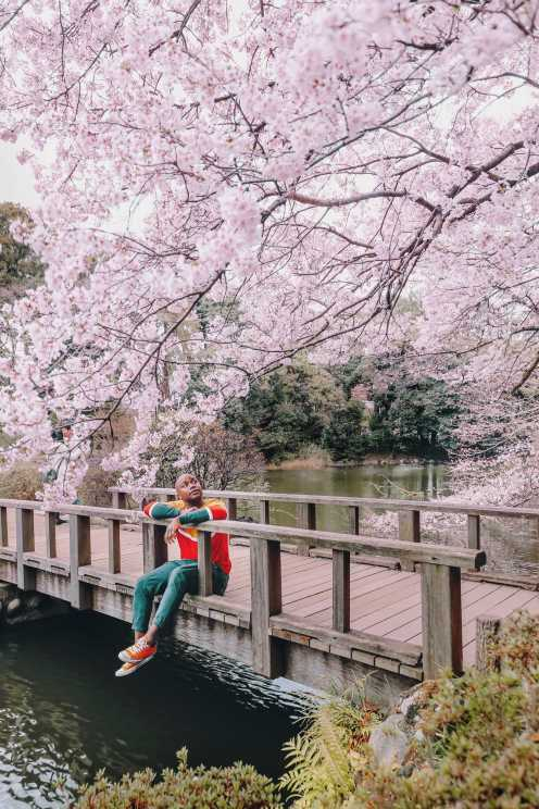 19 Very Best Things To Do In Tokyo (4)