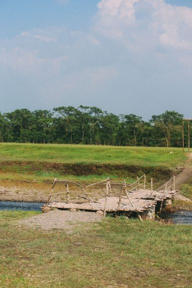 The Search For The One-Horned Rhino... In Chitwan, Nepal (21)