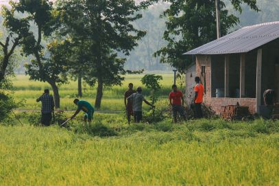 The Sights, Sounds And People Of Chitwan, Nepal (11)