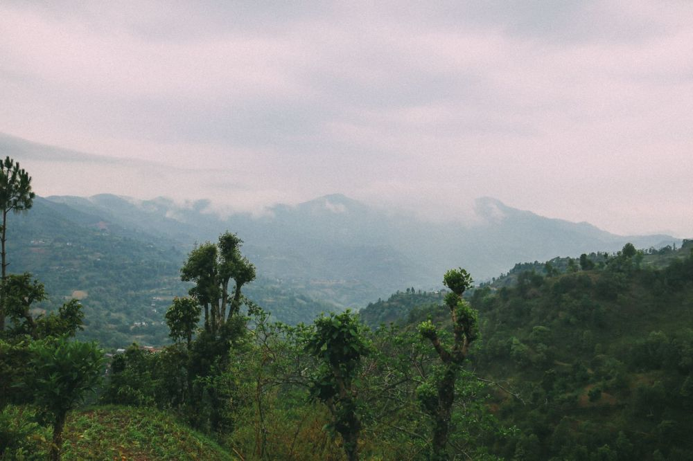 An Afternoon In Pokhara, Nepal (3)