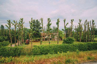 Exploring The Italian Region Of Lombardy – On A Rickshaw! (45)