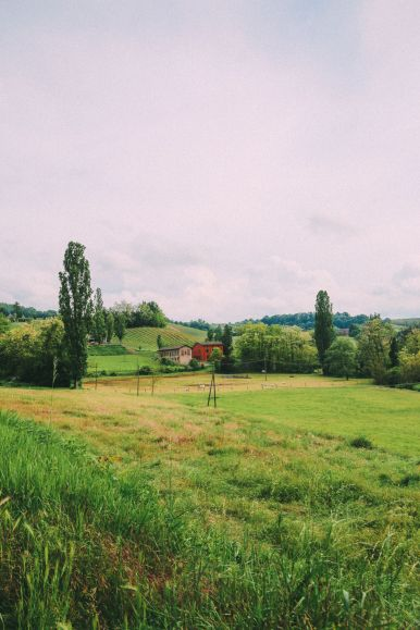 Exploring The Italian Region Of Lombardy – On A Rickshaw! (53)