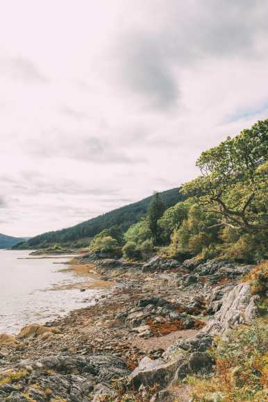 Whisky Drinking, Loch Rowing And Picnicking In The Scottish Highlands (50)