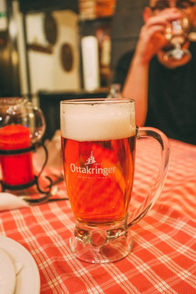 The Authentic Sights, Sounds And Tastes Of Vienna, Austria (13)