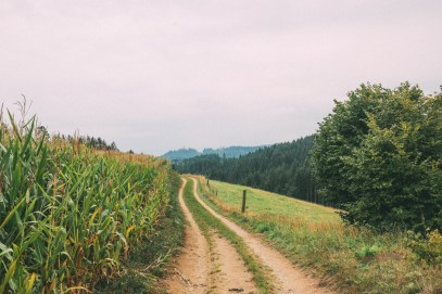 The Beautiful Villages And Rolling Hills Of Upper Austria (32)