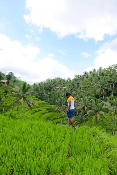 15 Things You Need To Know About Visiting Bali (20)