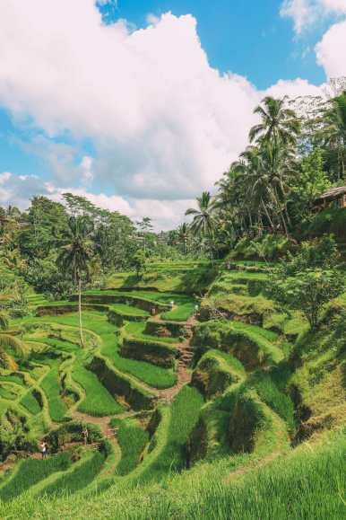 15 Things You Need To Know About Visiting Bali (29)