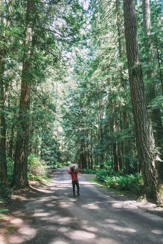 Driving The Sunshine Coast Of British Columbia Canada (28)