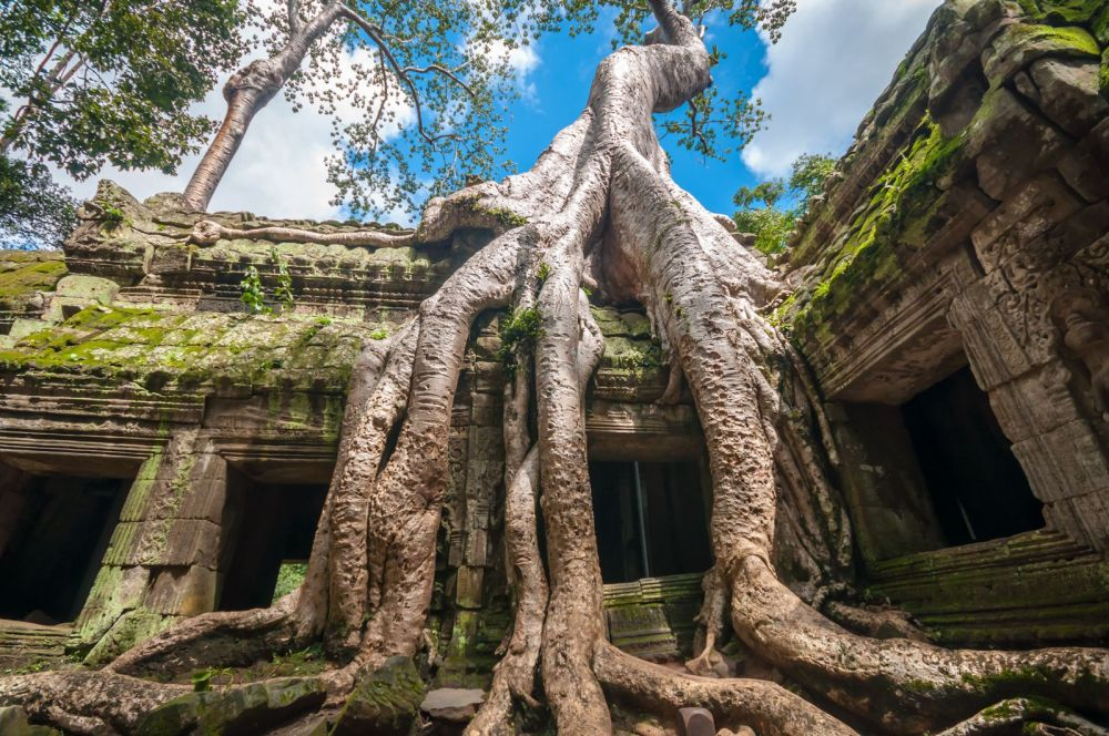 11 Incredible Temples You Have To See In Angkor, Siem Reap, Cambodia (10)