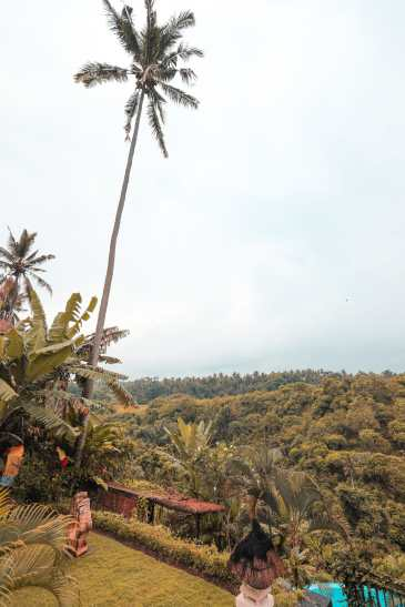Arrival In Bali + The Campuhan Ridge Walk In Ubud (4)