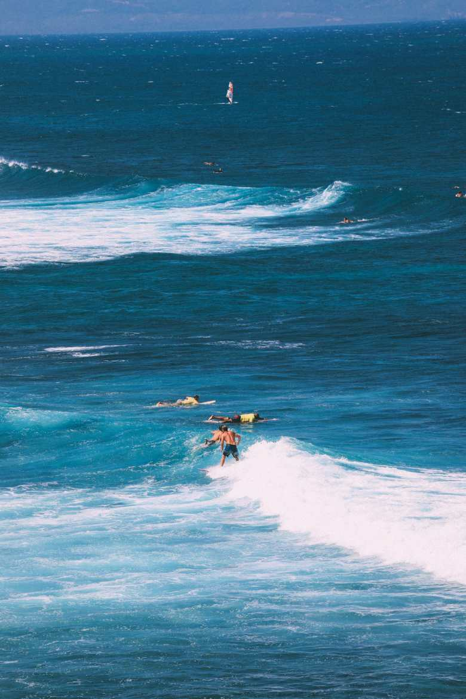 11 Really Impressive Reasons Why You Need To Visit Hawaii (12)