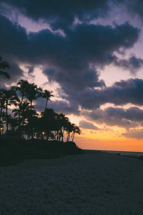 Photos And Postcards From Hawaii... (13)