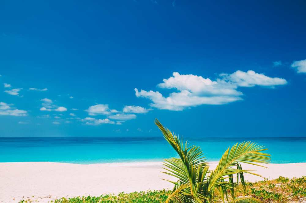 12 Things To Do In The Caribbean Island Of Antigua (8)