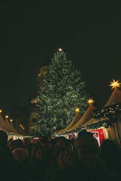 The Best Christmas Market In Berlin, Germany (26)