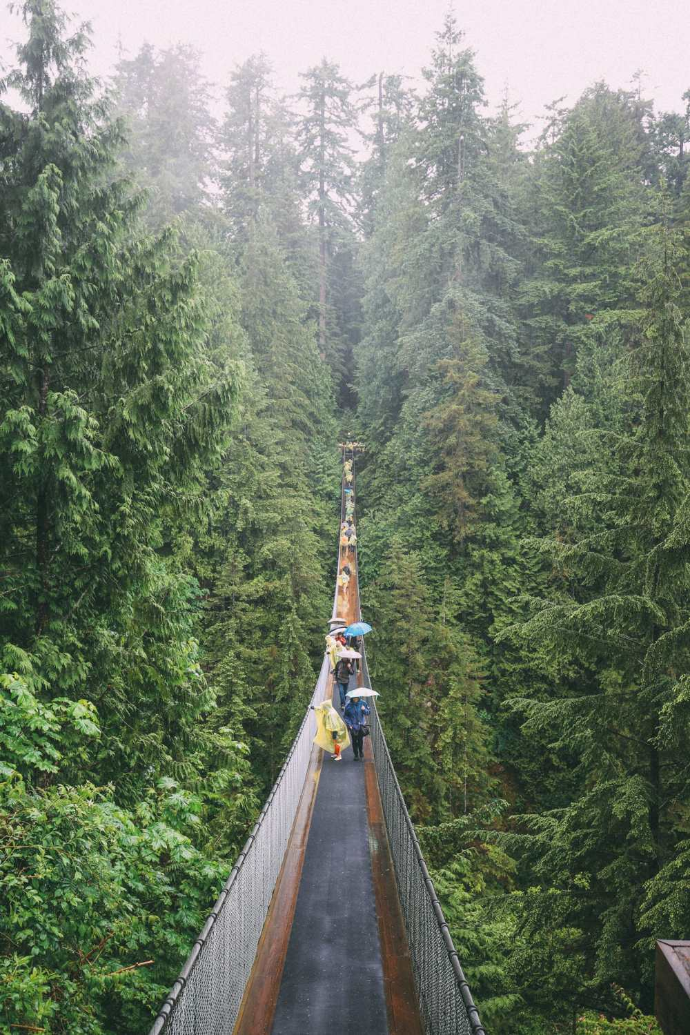 How To Spend A Lazy Day In Vancouver, Canada...(Plus, Exploring The Incredible Capilano Suspension Bridge) (11)