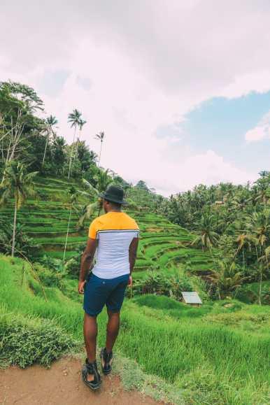 Bali Travel - Tegalalang Rice Terrace In Ubud And Gunung Kawi Temple (8)