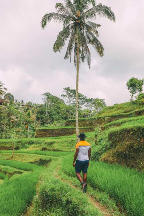 Bali Travel - Tegalalang Rice Terrace In Ubud And Gunung Kawi Temple (19)