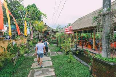 Bali Travel - Tegalalang Rice Terrace In Ubud And Gunung Kawi Temple (48)