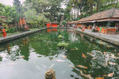 Finding A Secret Waterfall in Bali, Tirta Empul Temple And Mount Batur Volcano (11)