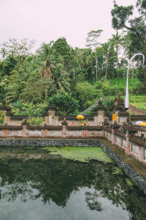 Finding A Secret Waterfall in Bali, Tirta Empul Temple And Mount Batur Volcano (22)