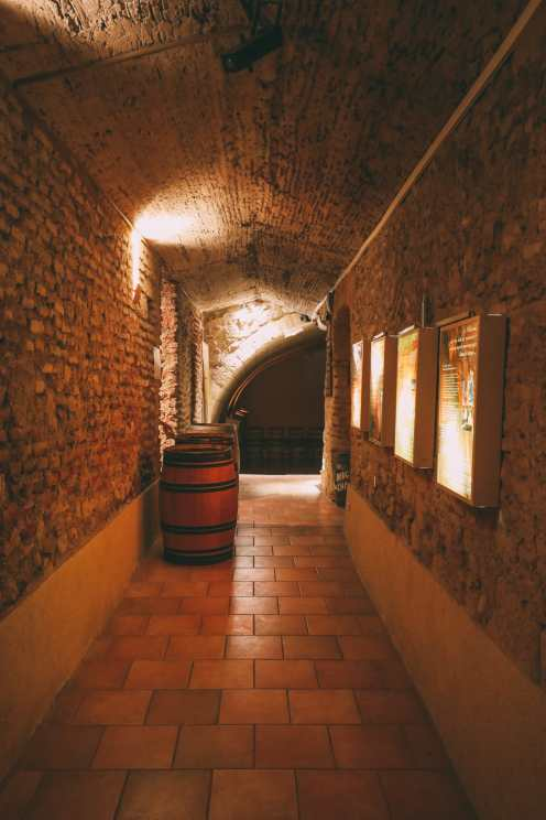 French Wine, French Castles And Delicious French Food - A Trip To French Wine Country (4)