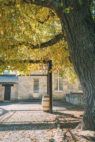 French Wine, French Castles And Delicious French Food - A Trip To French Wine Country (64)