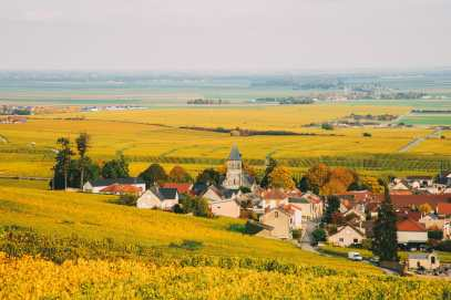 9 Beautiful Wine Regions In France You Need To Holiday In (12)