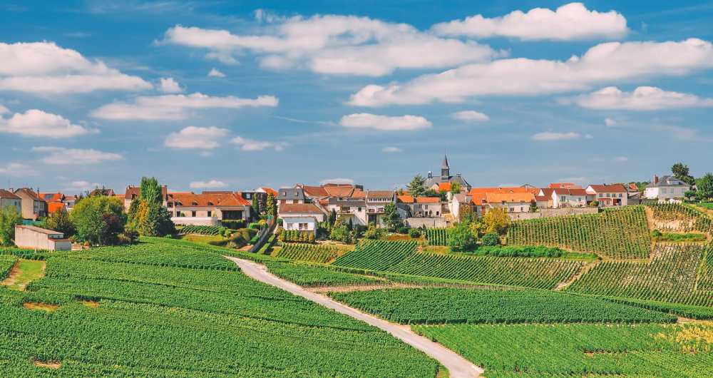 9 Beautiful Wine Regions In France You Need To Holiday In (13)