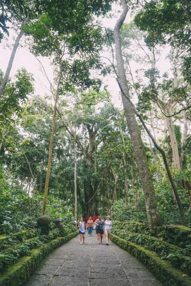 Ubud Monkey Forest In Bali - Things To Know Before You Visit (5)