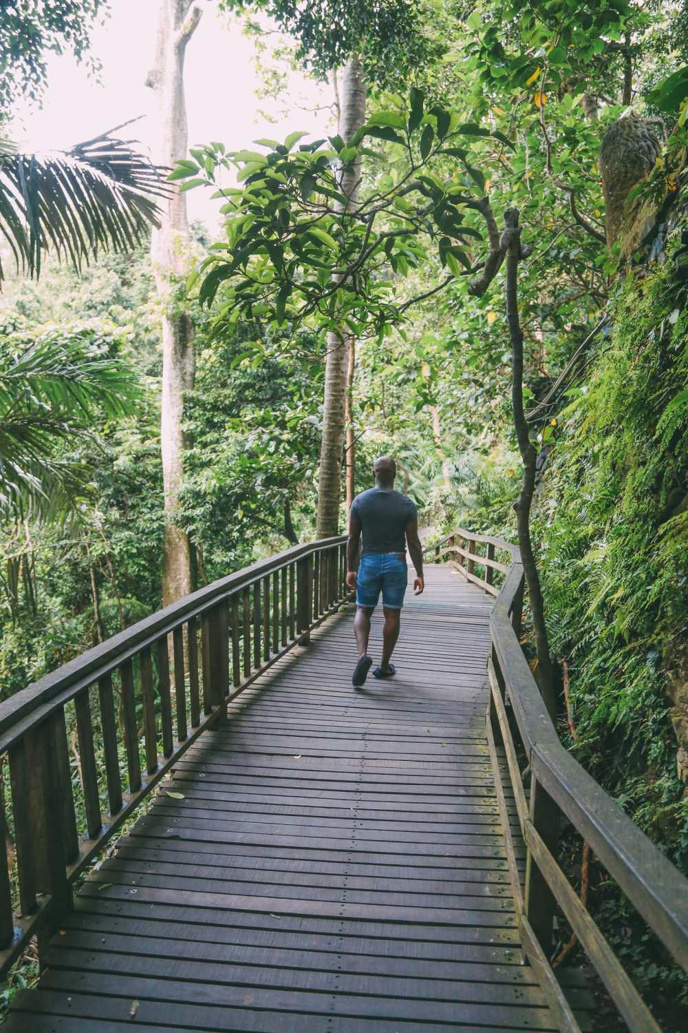 Ubud Monkey Forest In Bali - Things To Know Before You Visit (17)