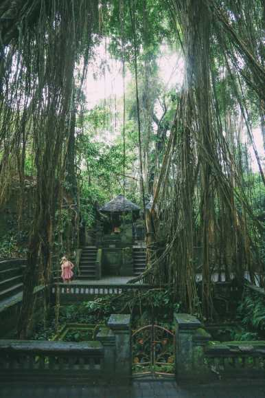 Ubud Monkey Forest In Bali - Things To Know Before You Visit (21)
